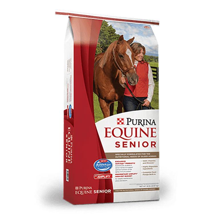 Lol horse 3003277-506