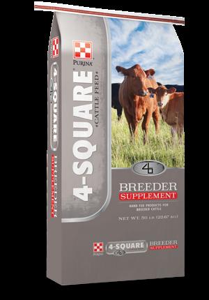 4 square breeder